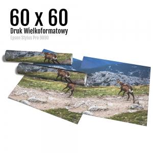 14 Wydruk dużych zdjęć druk posterów odbitki online micuda 60x60 cm