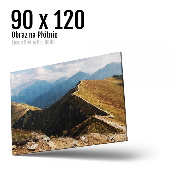 16 Foto obrazy drukowane na płótnie Odbitki Micuda 90x120 cm