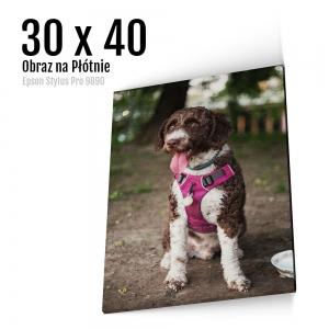 3 Foto obrazy na płótnie z własnego zdjęcia Online 30x40 cm