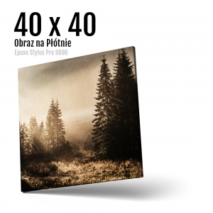 7 Foto obrazy na płótnie z własnego zdjęcia Online 40x40 cm Kwadrat