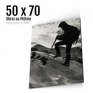 9 Foto obrazy na płótnie z własnego zdjęcia Online 50x70 cm