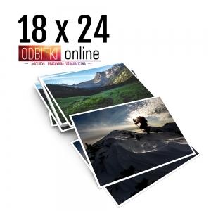 Odbitka 18x24 cm ILFORD Wywoływanie Zdjęć 1