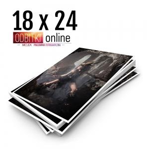 Ilford Galerie Metallic Gloss 18x24 - Odbitki Zdjęcia Wydruk Pracownia Fotograficzna