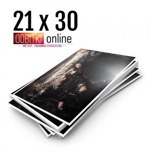 Ilford Galerie Metallic Gloss 21x30 - Odbitki Zdjęcia Wydruk Pracownia Fotograficzna