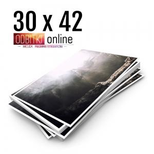 Ilford Galerie Metallic Gloss 30x42 - Odbitki Zdjęcia Wydruk Pracownia Fotograficzna