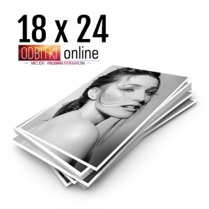 Ilford Galerie Mono Silk Warmtone 18x24 - Odbitki Zdjęcia Wydruk Pracownia Fotograficzna